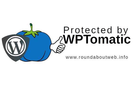 Risiko im Internet – WordPress Sicherheit